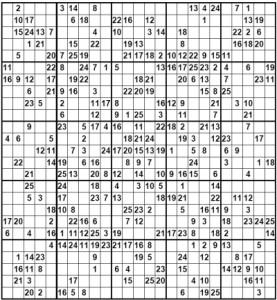 Large Sudoku